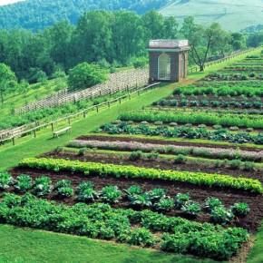 Inspiring Garden: Monticello