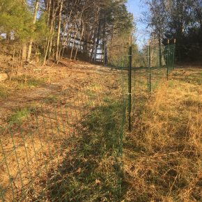 Making a Pig Fence